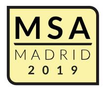 MSAnowebMSA2019-H-big